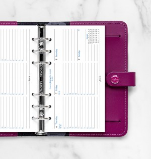 Week On Two Pages Diary With Appointments Personal Horizontal