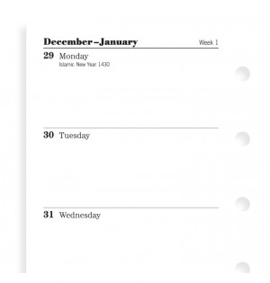Week On Two Pages Diary Mini 2021