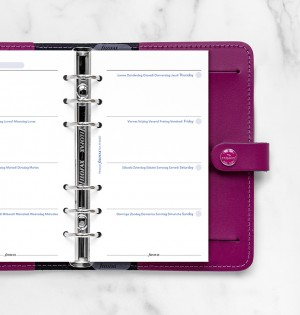 Any Year Week On Two Pages Diary Personal