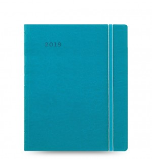Filofax Monthly Planner Aqua - Executive 2019